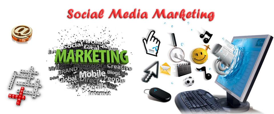 Social Media Marketing - We Bring Traffic - Meena Infotech